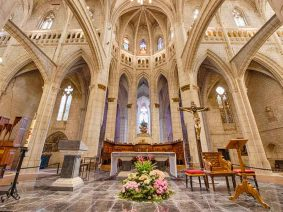 Guided tour of Vitoria-Gasteiz cathedral including a VR experience